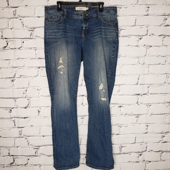 Torrid Distressed Relaxed Boot Jeans